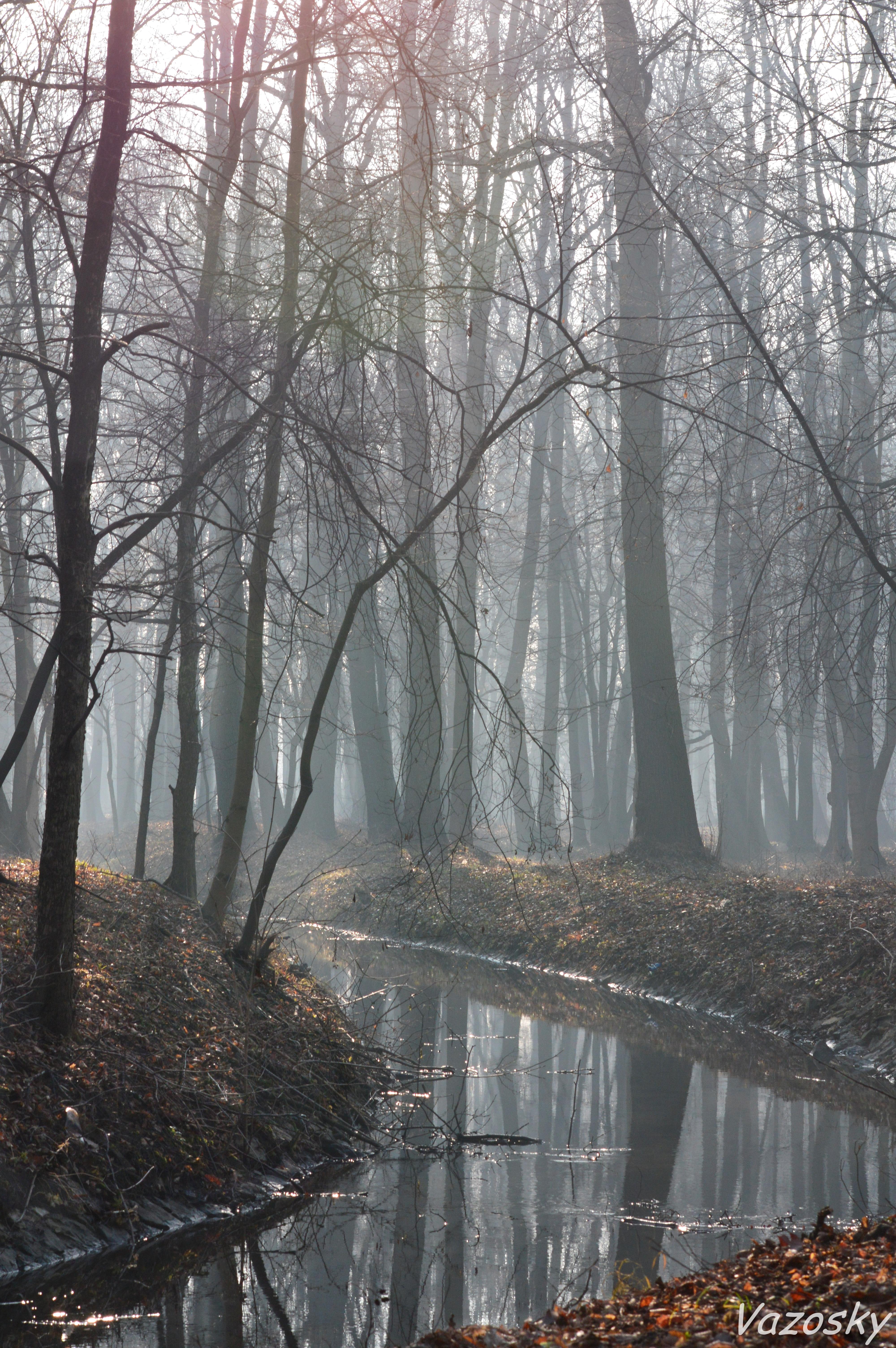 Landscapes by vazosky