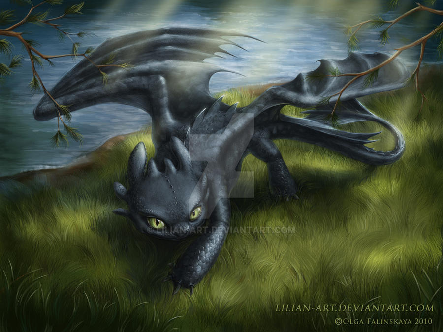 Night fury by Lilian-art