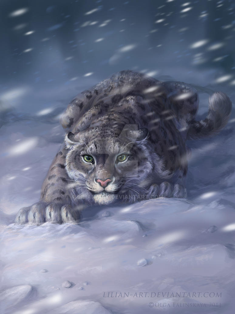 Snow Leopards by Lilian-art