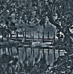 Bridge Over Shallow Water