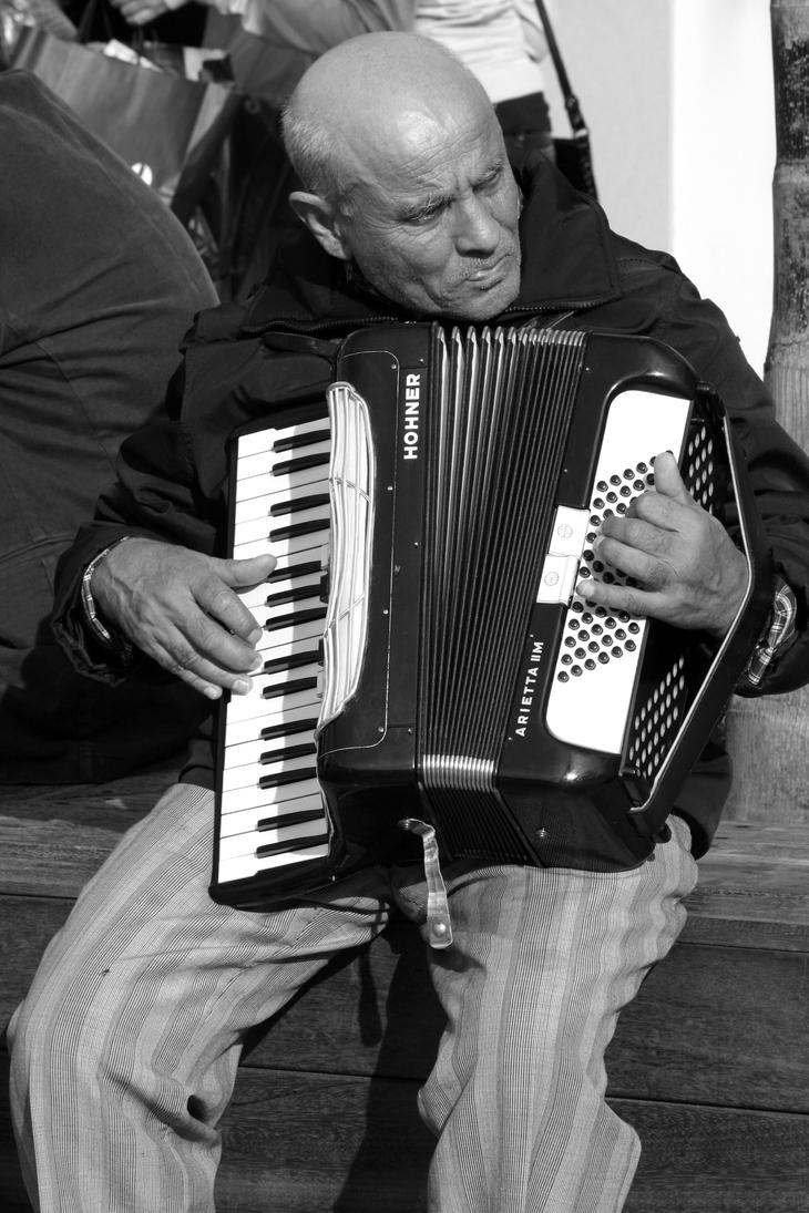 The Accordionist by erene