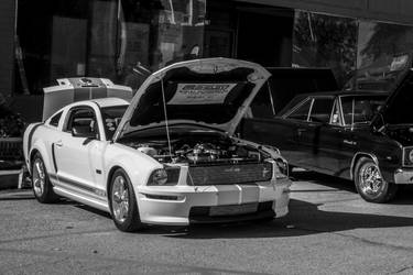 Mustang by ATHPhotography