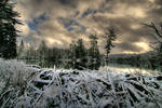 Snowy Beaver Pond HDR