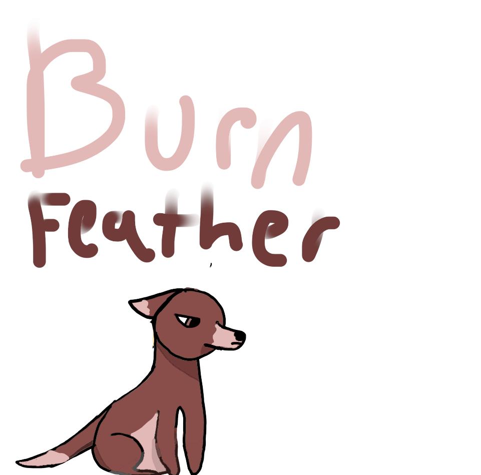 BurnFeather! Desc!!!