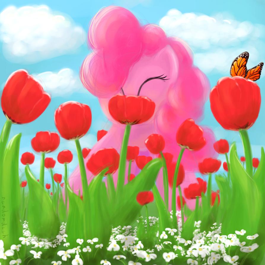 Spring is here! by RandomDash