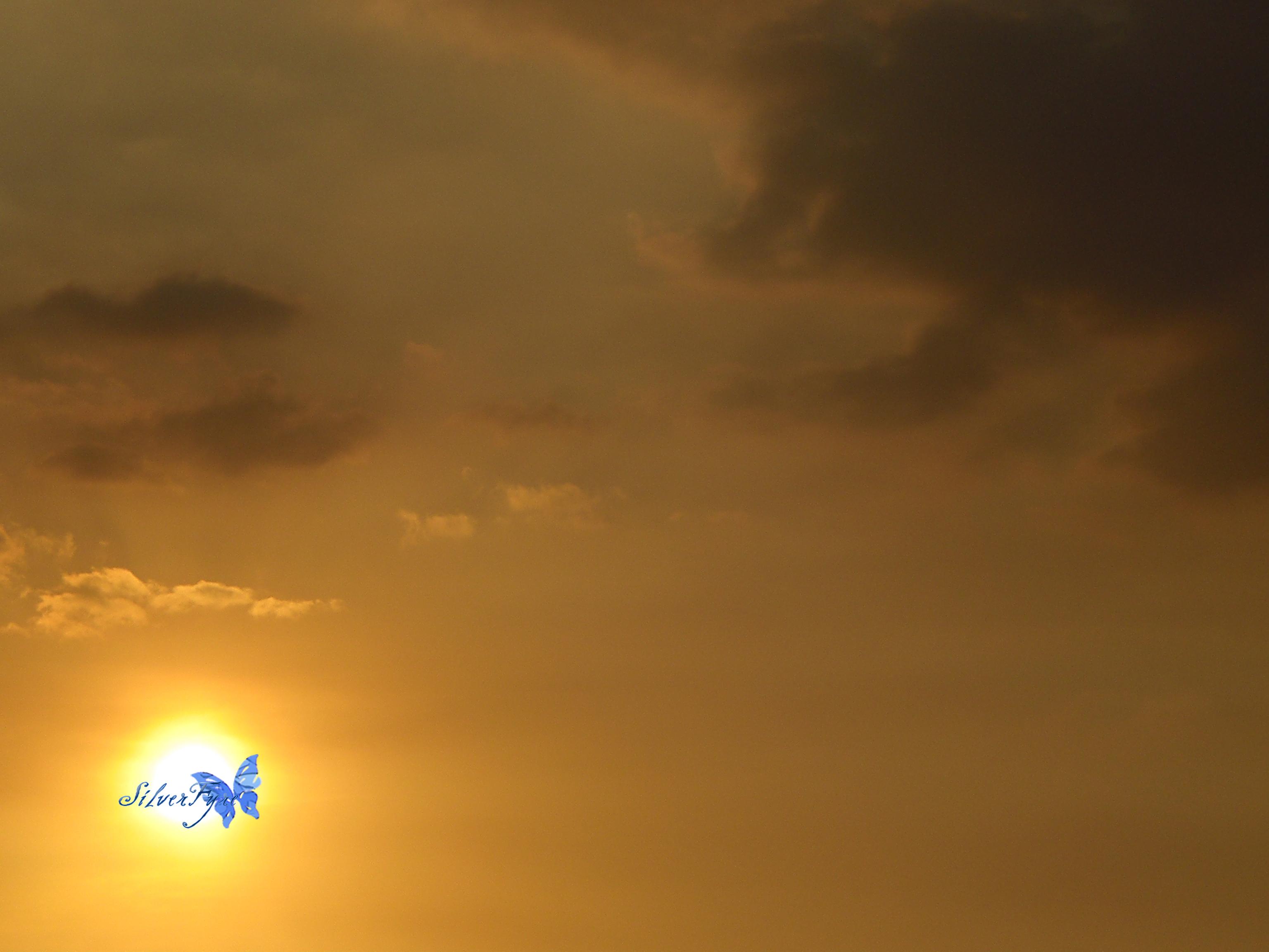 Sky: Summer Sun III by bloodyblue