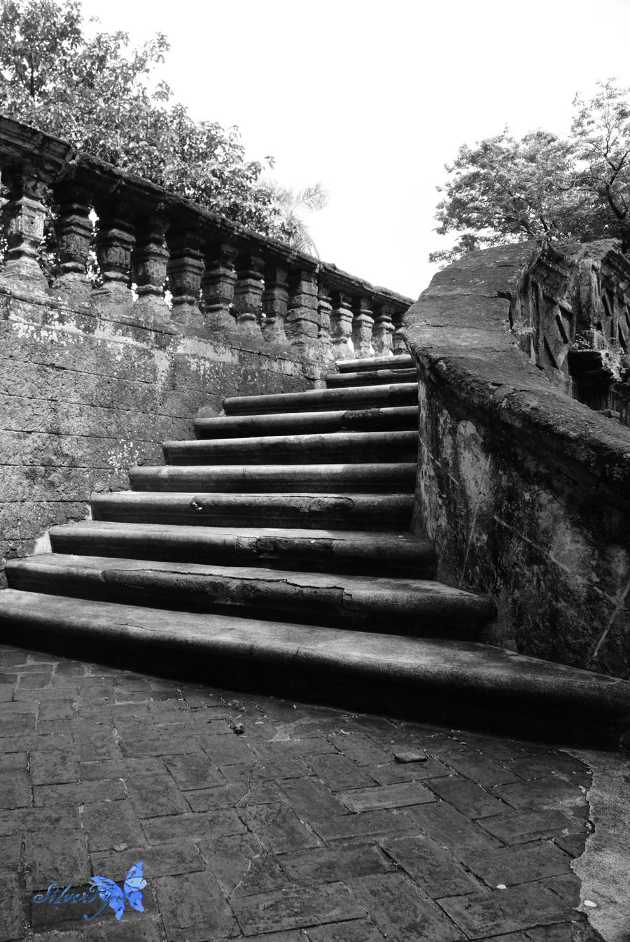 stairs bnw by bloodyblue