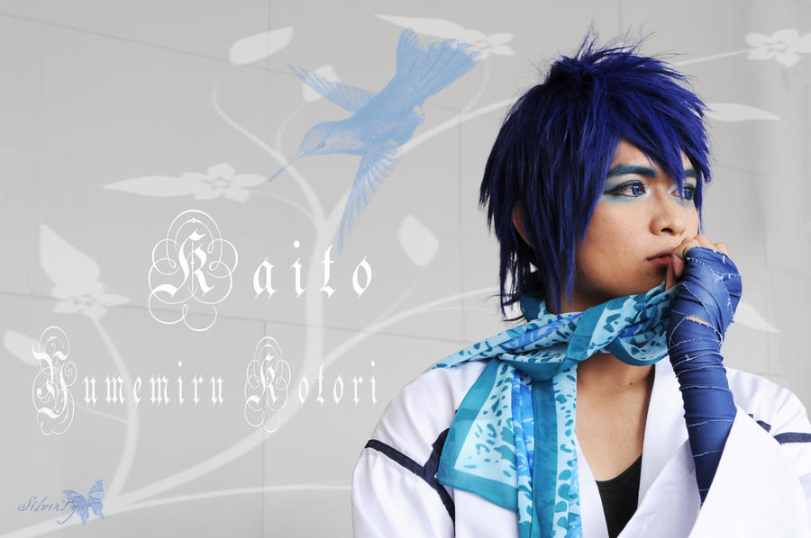 Yumemiru Kotori: Kaito by bloodyblue