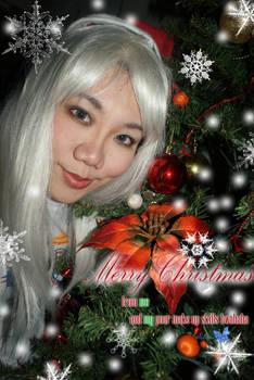December ID 2011