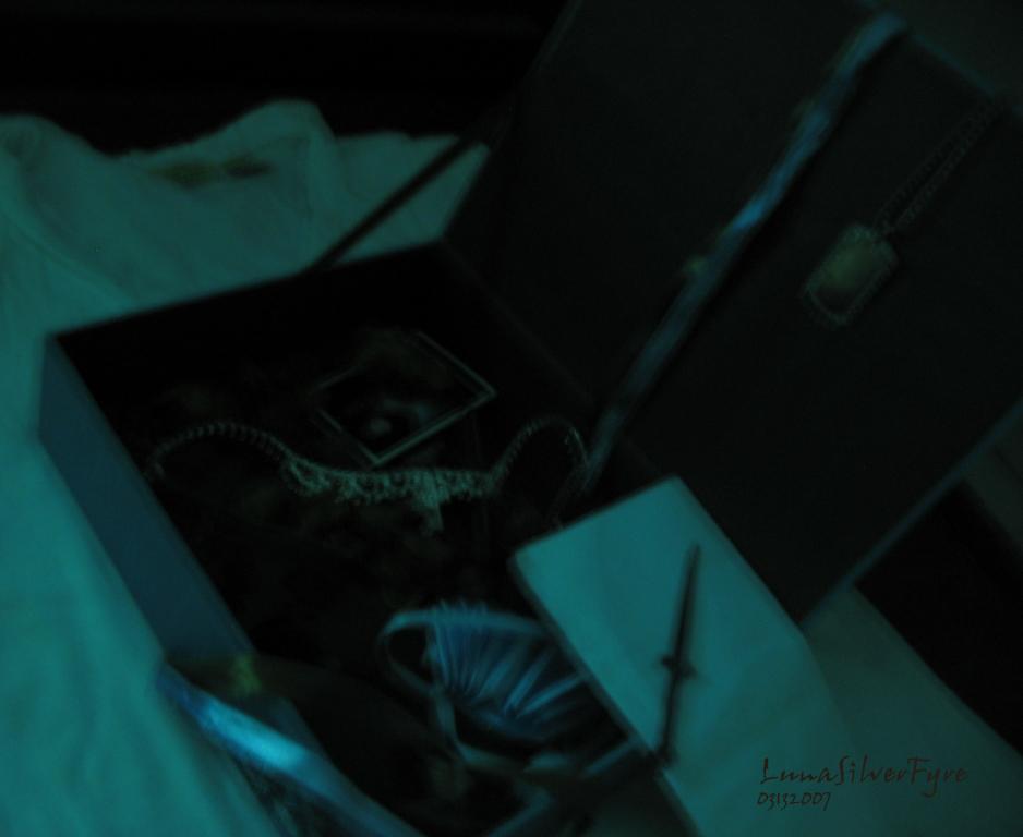 my treasure box of...  8 by bloodyblue