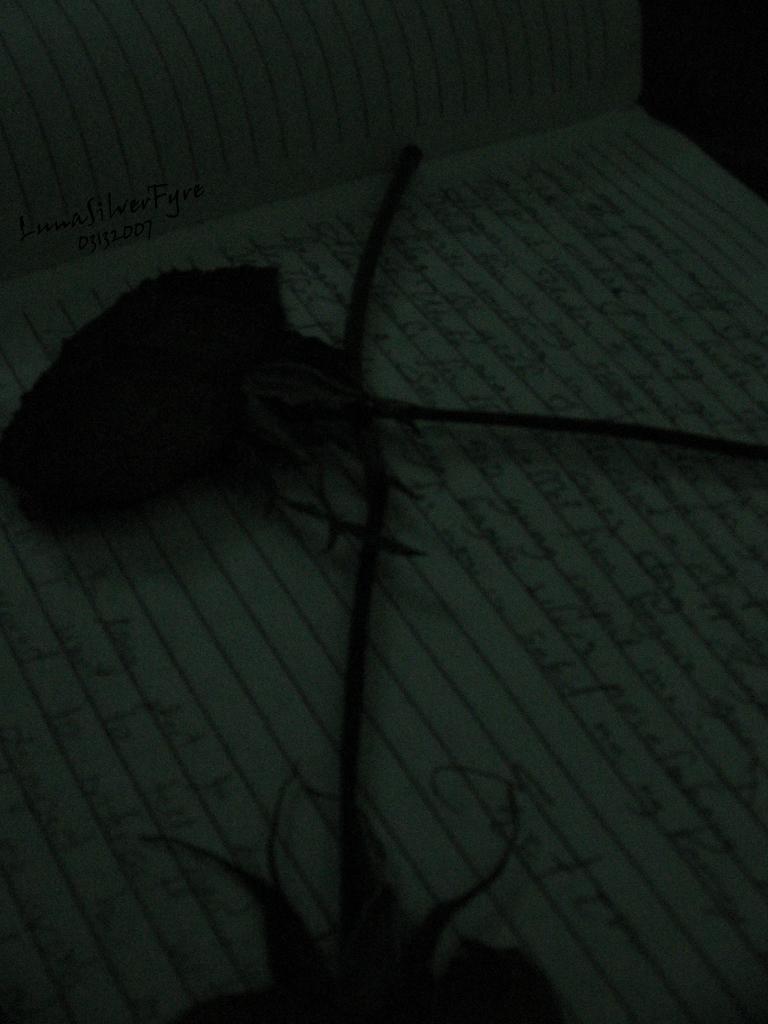 flowery words 3 in by bloodyblue