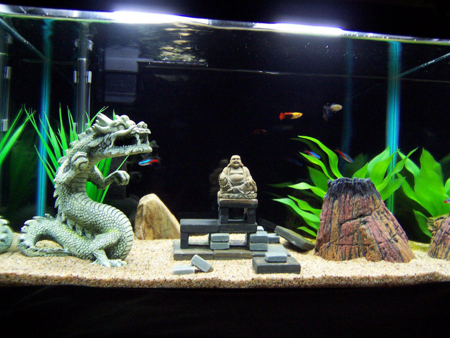 Zen tank by loverofblackwolves64 on deviantart for Decoration zen aquarium