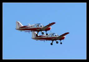 Maltese Bulldogs At Airshow