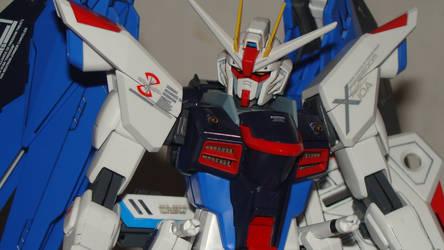 Gundam Freedom 1/100 MG