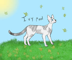 ~Ivypool~ by Lizthewolflover