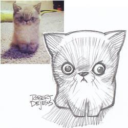 Mr Mia Sketch by Banzchan