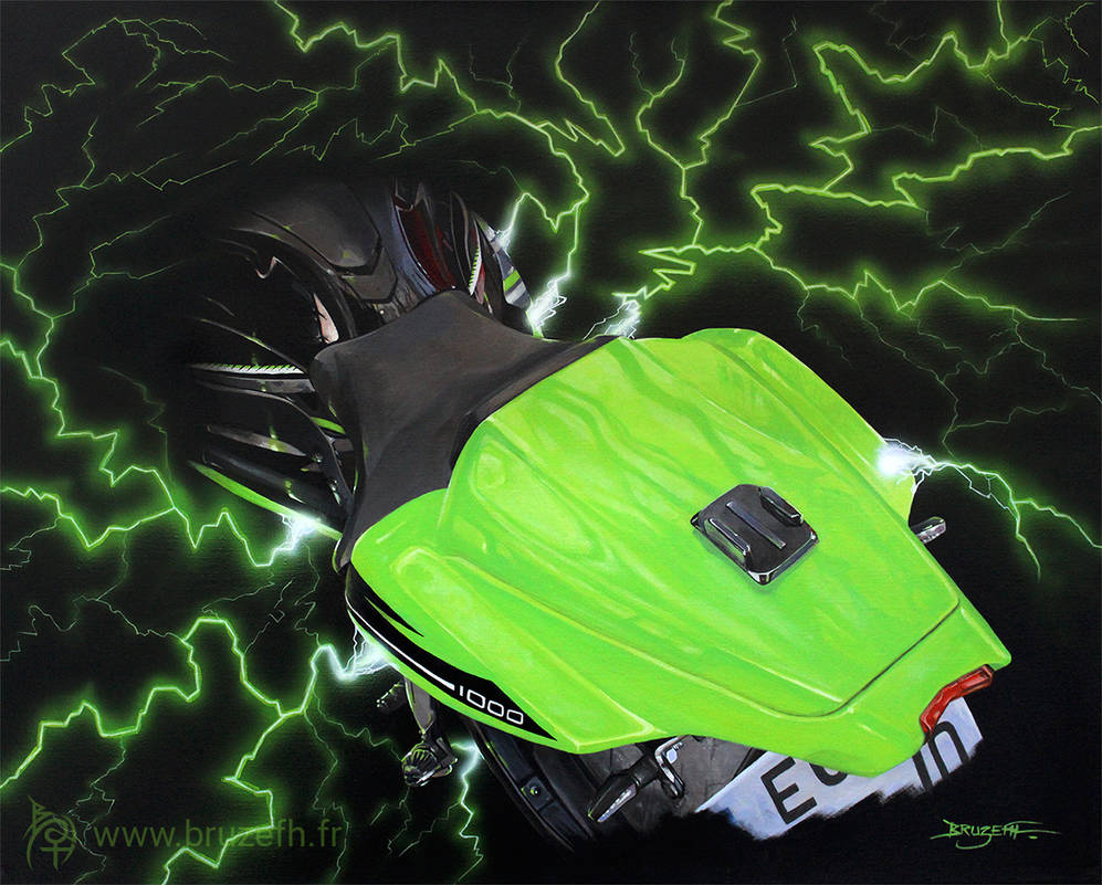 Ninja 1000 ZX-10R by Bruzefh