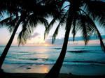 Sunset by Ocean