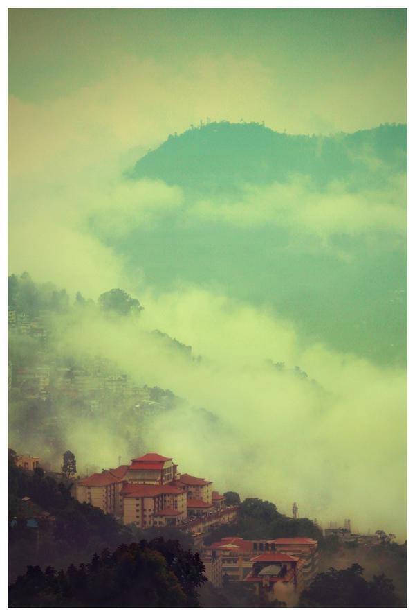 Himalayan Realm