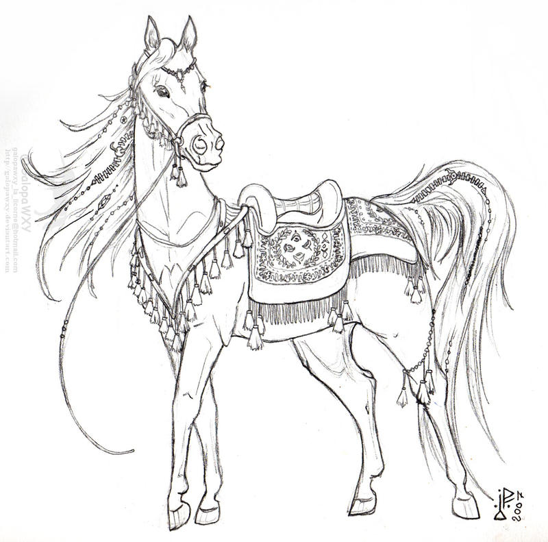 Arab Mare In Ceremonial Tack By GalopaWXY On DeviantART