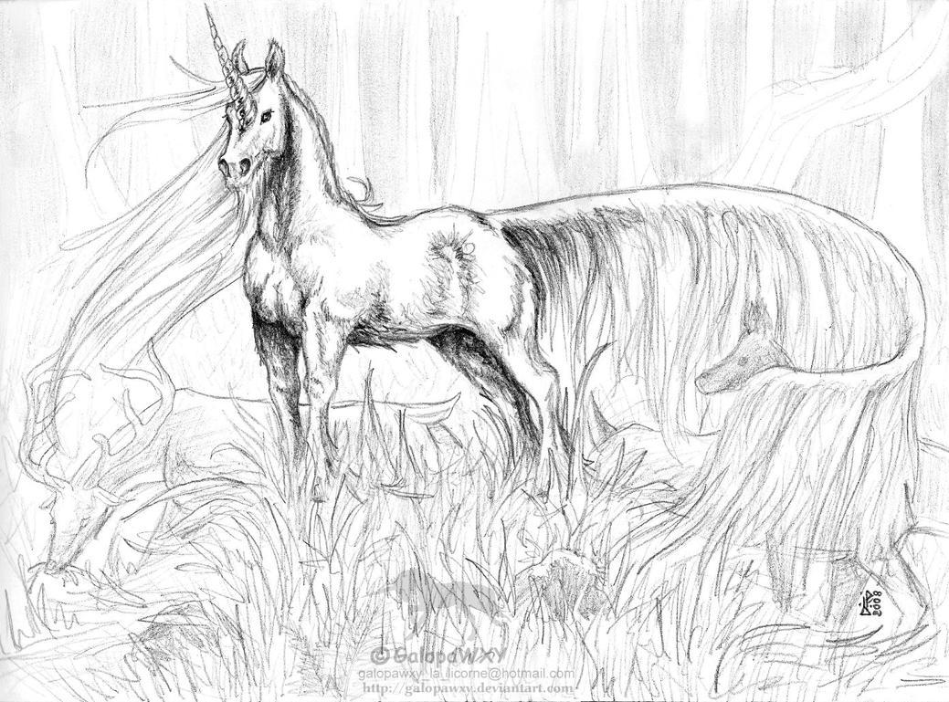 The Great Unicorn By GalopaWXY