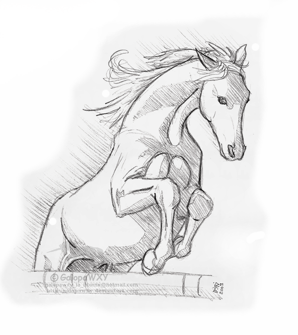 Flying horse by galopawxy on deviantart - Coloriage cheval qui saute ...