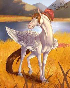 Sunny Way horse
