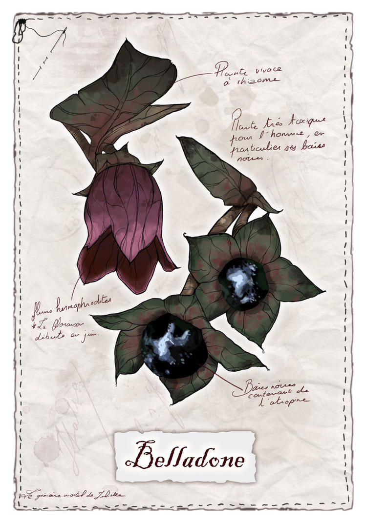 Evil Herbarium - Belladona by JulietteAmadisArt