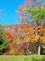New Hampshire by DeaniMoFucka