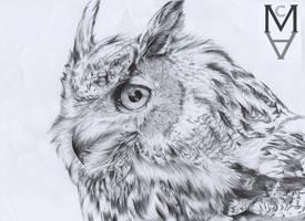 Owl by sarah-mca-art