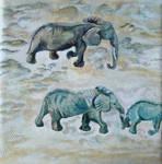 Elefants in desert