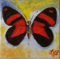 Schmetterling-04 by sgarciaburgos
