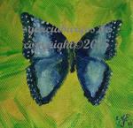 BlauerSchmetterling Blue Butterfly