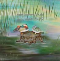 Ducks by sgarciaburgos