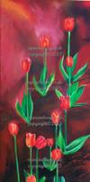 Tulpen tulips