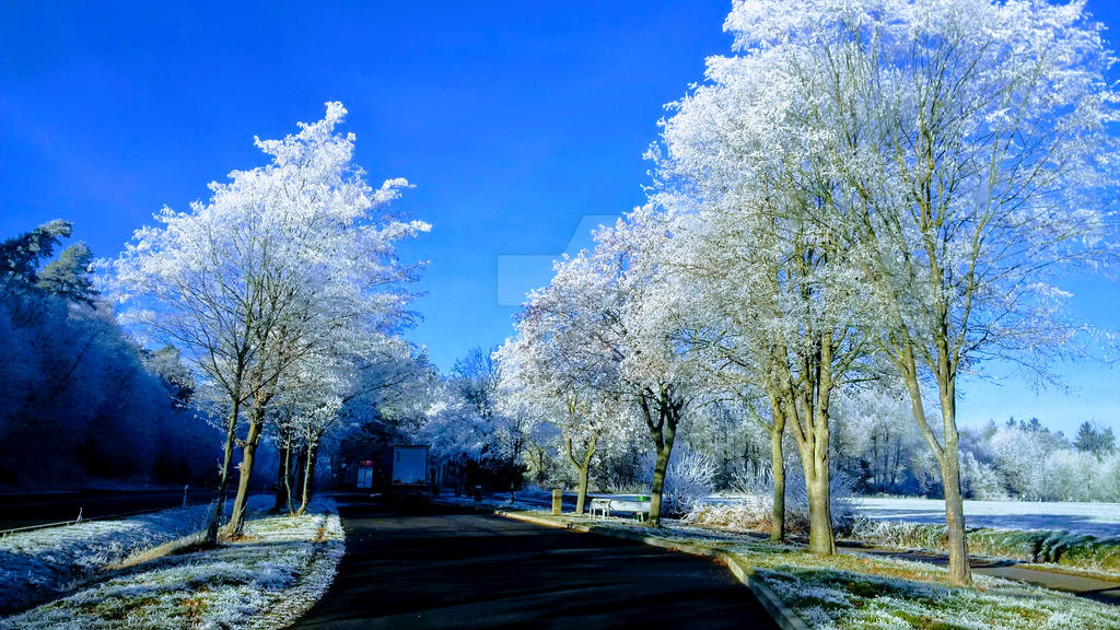 Winter road by sgarciaburgos