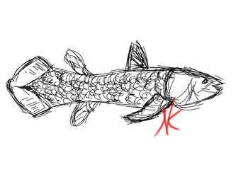 Daily Sketch - 12-29-15 - Coelacanth by Nekroskoma
