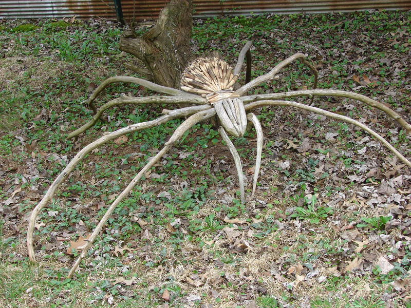 Yard Spider by StutleyConstable