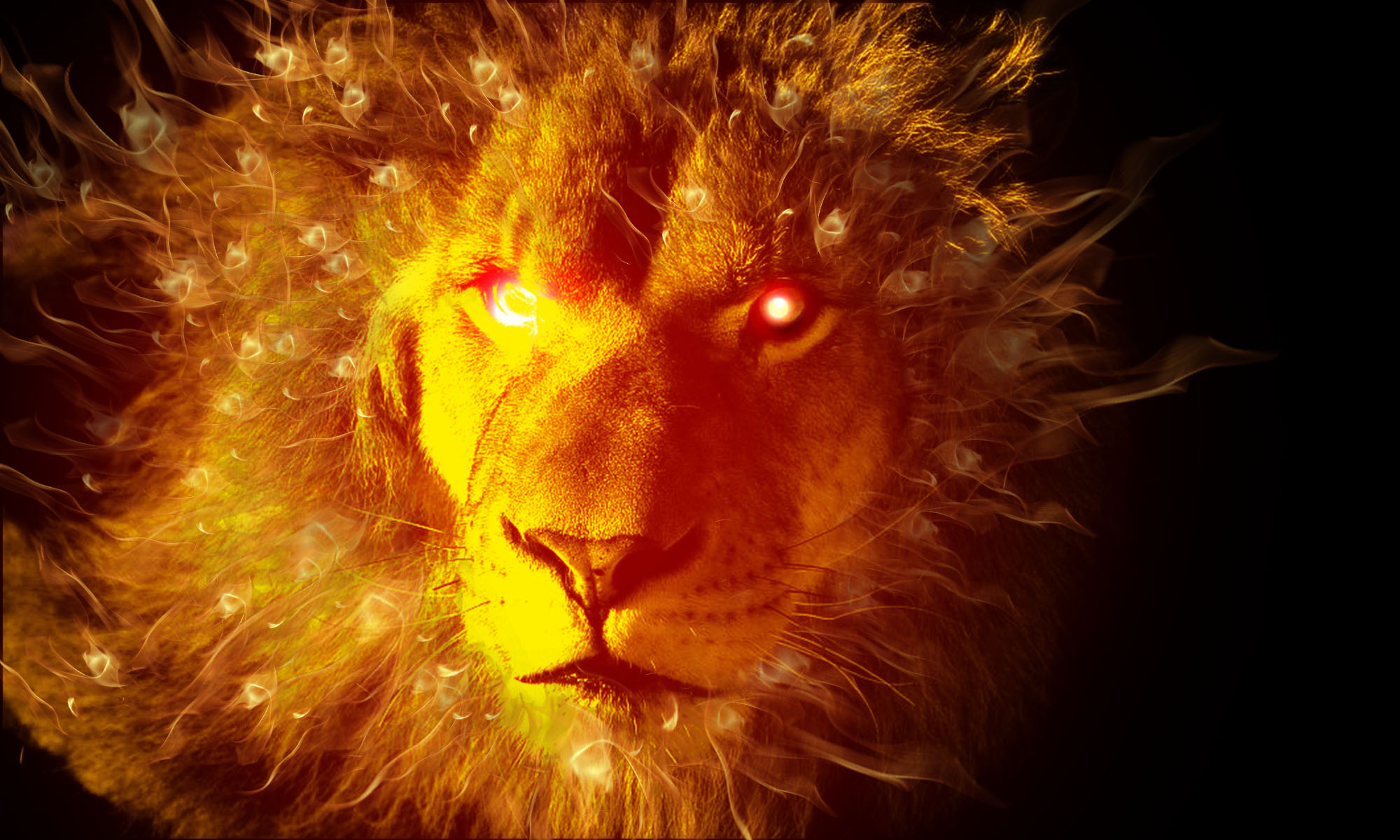 Fire Lion by Marconit on DeviantArt