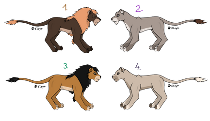 Lion Adopts 5 (CLOSED)