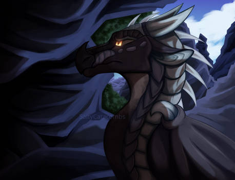 DTA Dragon