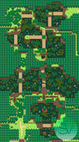 Route 14: Mangrove Swamp
