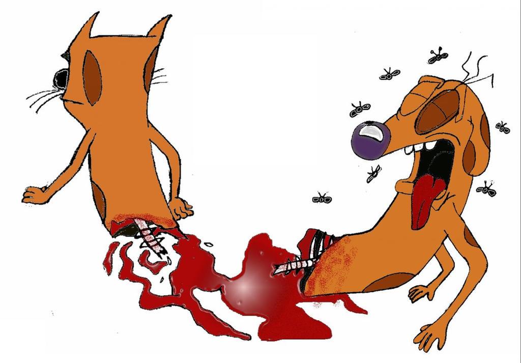Cat Dog Cartoon Episodes
