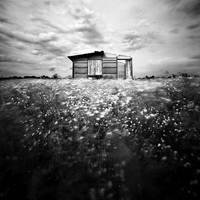 Reveries-I by Loran31