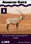 Arabian Oryx: Arabian Nights #1