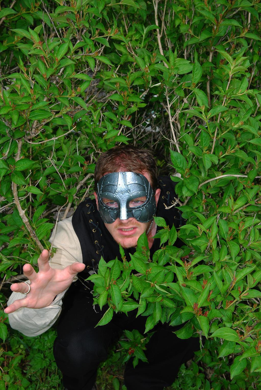 Medival___Hiding_In_Bushes_2_by_fervalos