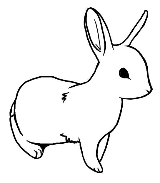 Line Drawing Of Rabbit Face : Bunny lineart by blakperl on deviantart