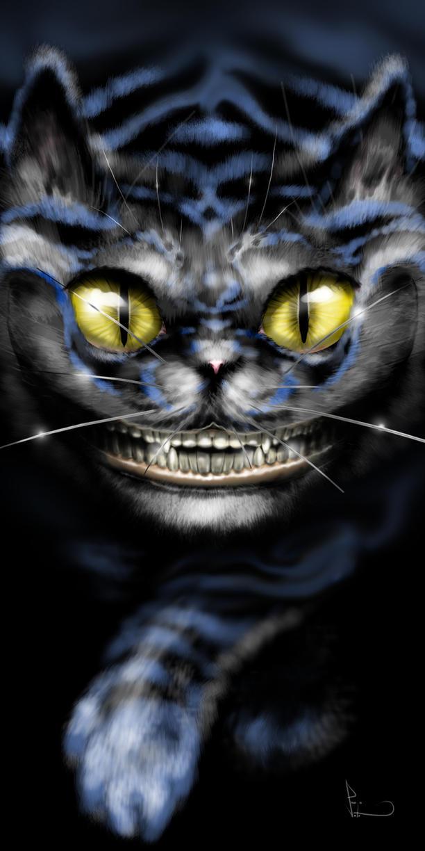 cheshire cat in the dark by 0nesto
