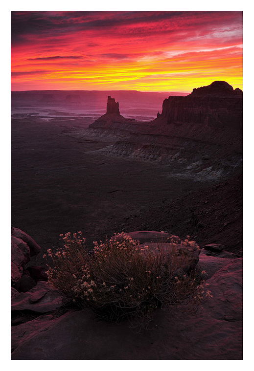 Canyonlands Sunset by collectiveone