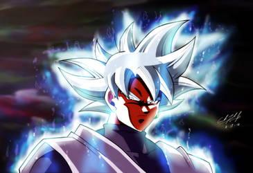 Goku Black Mastered Ultra Instinct